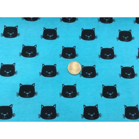 Cats heads on blue