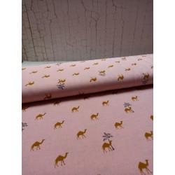 Dromadary pink
