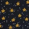 Noël Etoiles dorées sur noir